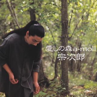 宗次郎/愛しの森 a-moll
